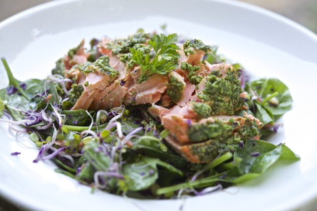 Salmon and Spinach Salad with Arugula PestoFree Paleo Food